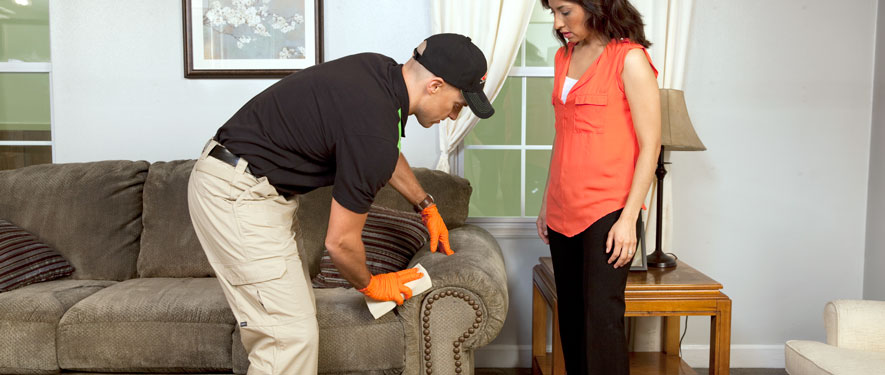 Glen Mills, PA carpet upholstery cleaning