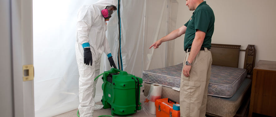 Glen Mills, PA mold removal process